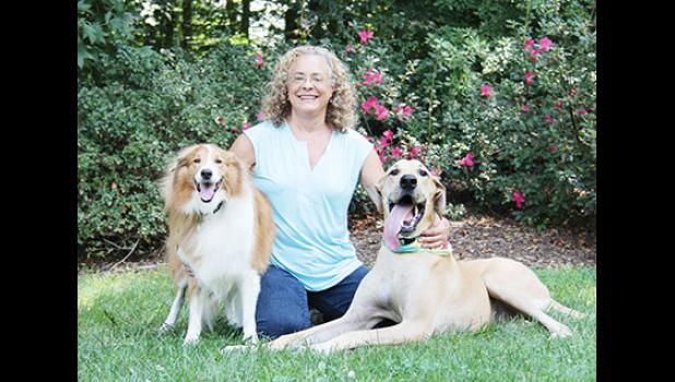 After 27 years of running Blue Ridge Animal Hospital, Dr. Lori York is planning to retire no later than June 1 and to move to Colorado.