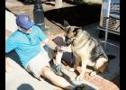John Zabelle and his dog, Cali, enjoyed a frozen treat during the Greer Farmers Market Dog Days of Summer Petastic Event last Saturday at Greer City Park.