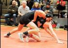 Eleven Greer wrestlers will participate in the Class AAAA Individual Upper State tourney.