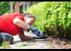 Mandy Underwood  trims the hedges at Greer Community Ministries during the Keller Williams RED Day.